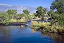 View of the Owens River in central California